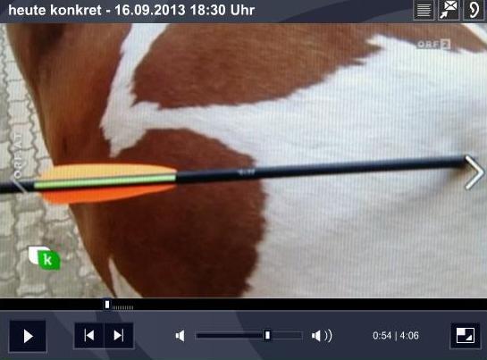 """In der ORF-Sendung """"heute konkret"""" vom 16. 9. 2013 wurde u.a. ein Pferd gezeigt, das mit einem Pfeil abgeschossen worden war."""