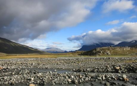 Begegnungen in der Tundra