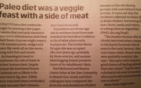 Steinzeiternährung (Paleo-Diät): Vegan, mit ein bisschen Fleisch als Beilage