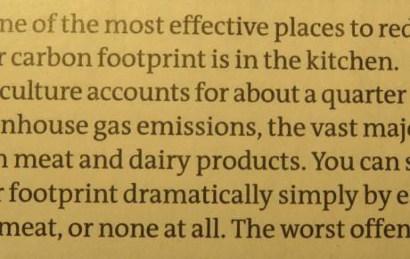 New Scientist verbreitet Optimismus zum Klimawandel
