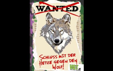 Zur Psychologie der Wolfshasser und -hasserinnen